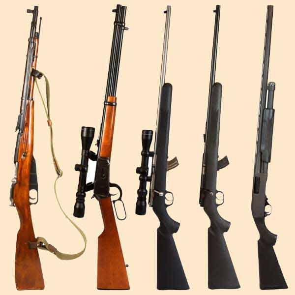 нарезное оружие для охоты цена