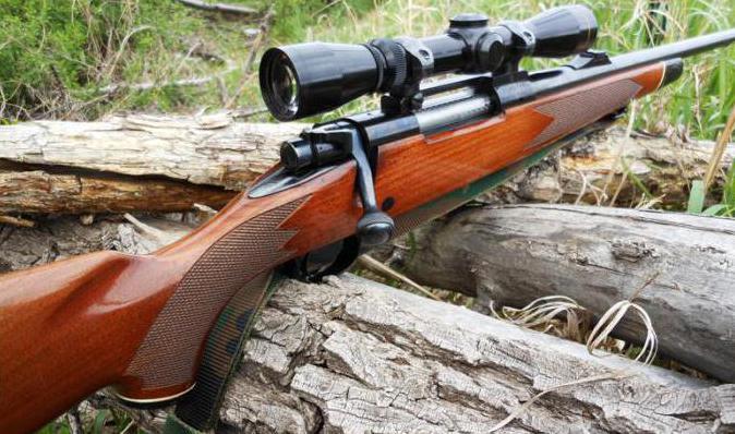 Как купить недорогой карабин для охоты